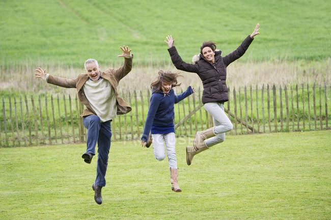 Família feliz se divertindo e pulando no campo verde — Fotografia de Stock