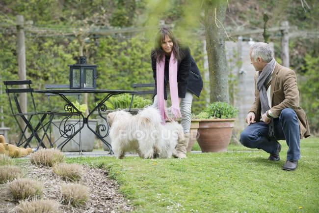 Couple jouant avec des chiens mignons dans le jardin — Photo de stock