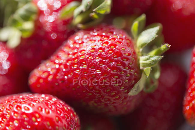 Close-up of red fresh strawberries in heap — Stock Photo