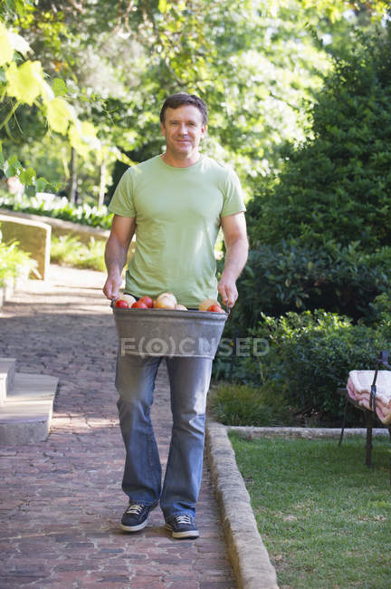 Mature man carrying fresh picked fruits in basket in garden — Stock Photo