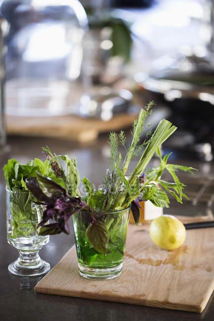 Kräuter im Glas, selektiver Fokus — Stockfoto