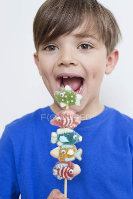 Retrato de bonito menino comendo doces no pau — Fotografia de Stock