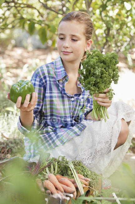 Girl choosing vegetables from crate in garden — Stock Photo