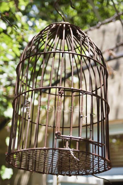 Gros plan des cages d'oiseaux, orientation sélective — Photo de stock