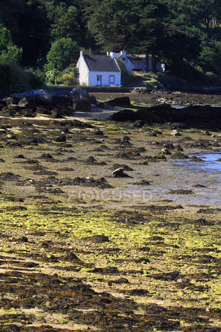 House on lake coast, France, Brittany. Ile aux Moines. Le Lerio. — Stock Photo