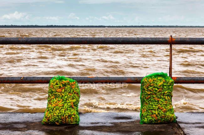 Peperoncini in sacchetti lungo il Rio delle Amazzoni, focus selettivo — Foto stock