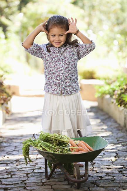Cute little girl standing near wheelbarrow with carrots on path in countryside — Stockfoto