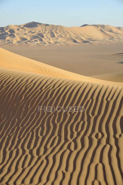 Sultanat von Oman, Dhofar, Rub Al Khali Wüste, genannt das leere Viertel, die größte Sandwüste der Welt, Grenze des Jemen und Saoudi Arabien, Landschaft der rollenden ockerfarbenen Sanddünen — Stockfoto