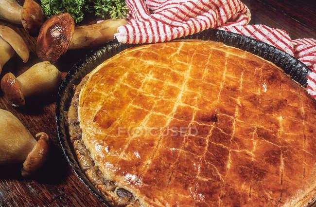 Pastete mit Pilzen in Frankreich, Nouvelle Aquitaine — Stockfoto