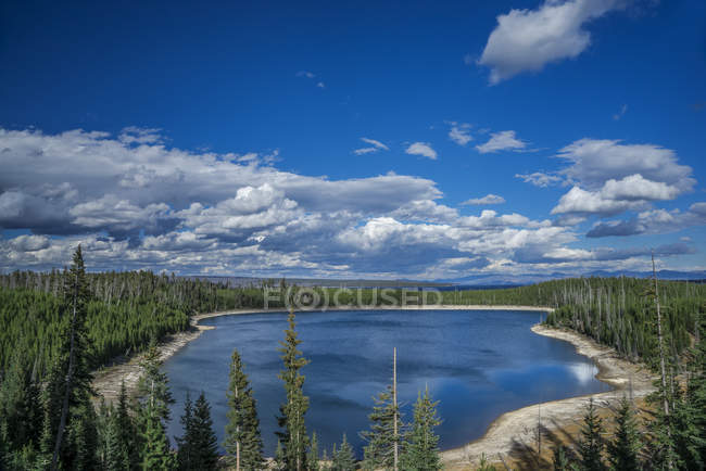 Vista de Shoshone Lake and woods, Wyoming, Estados Unidos de América, América del Norte - foto de stock