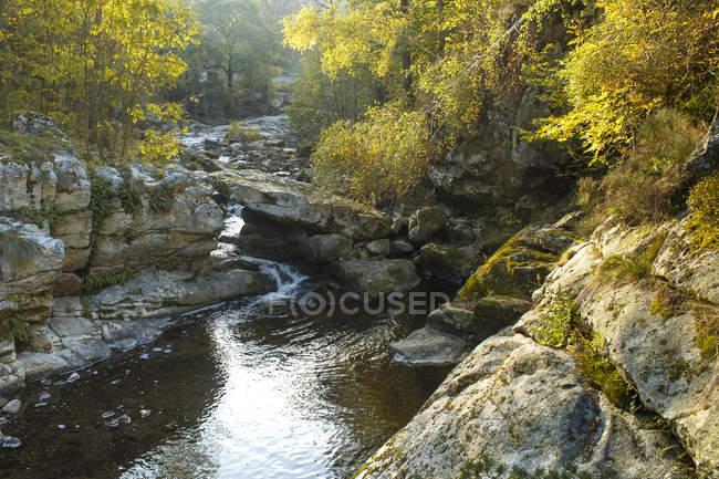 France, Auvergne-Rhones-Alpes, Haute-Loire, gorges of mountain river — стоковое фото