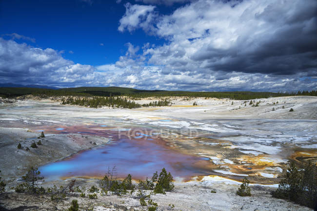 Piscine colorée, bassin Norris Geyser, parc national de Yellowstone, Wyoming, États-Unis d'Amérique, Amérique du Nord — Photo de stock