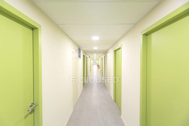 Green doors, selective focus — Stock Photo