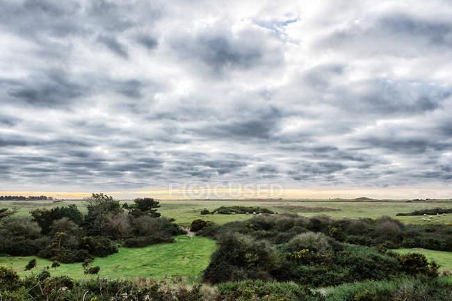 Landschaftliche Sicht der Landschaft, Normandie — Stockfoto