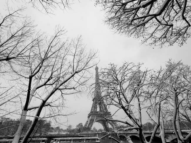 France, Paris, 16th arrondissement, trees on the quays of the Seine and Eiffel tower enneigs / Snow covered river Seine trees and Eiffel tower, 16th arrondissement, Paris, France — Stockfoto