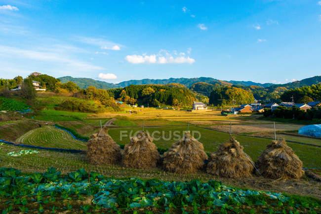 Vista panoramica della prima capitale imperiale registrata, prefettura di Nara, Kansai, Honshu, Giappone — Foto stock