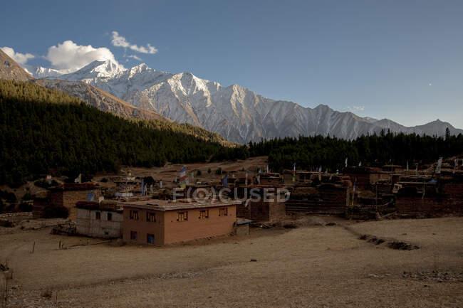 Непал, Долпо, летнее время в деревне, окруженной заснеженным персиком, Долпо, Непал — стоковое фото