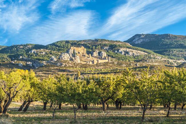 Испания, община Арагон, провинция Уэска, крепость Лоарре (XI-XIII века), вид с культурной равнины — стоковое фото