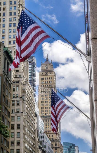 USA, New York, Manhattan Midtown, 5th Ave near Trump Tower — Stock Photo