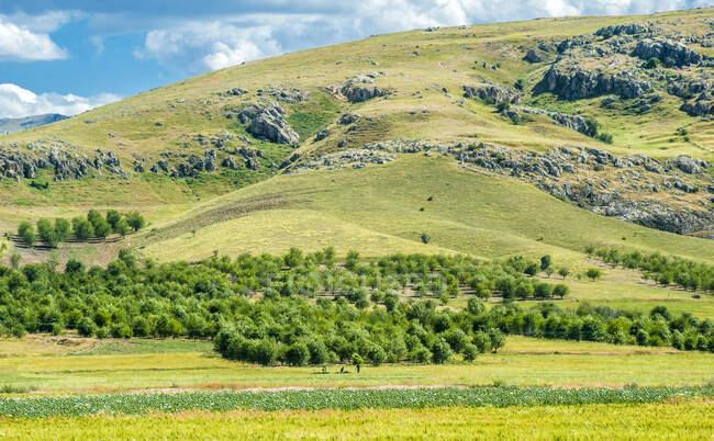 Турция, ландшафт центральной Анатолии — стоковое фото