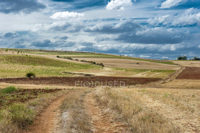Spain, autonomous community of Castile and Leon, Burgos province, countryside around Covarrubias — Stock Photo