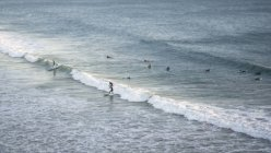 High angle view of people surfing by ocean shore in Taghazout, Morocco — Stock Photo