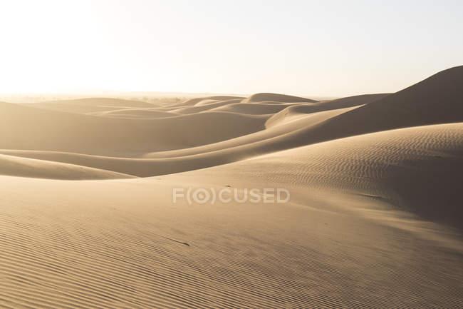 Dune di sabbia del sole in Sahara deserto, Merzouga, Marocco, Africa nord-occidentale — Foto stock