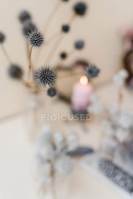 Close-up of dry thistles over autumnal decoration of natural materials — Stock Photo