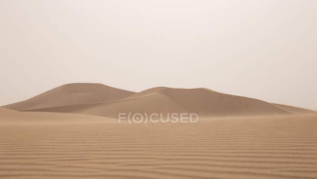 Dunes de sable avec ondulations dans le Sahara désert, Erg Chegaga, Maroc, Afrique du Nord-Ouest — Photo de stock