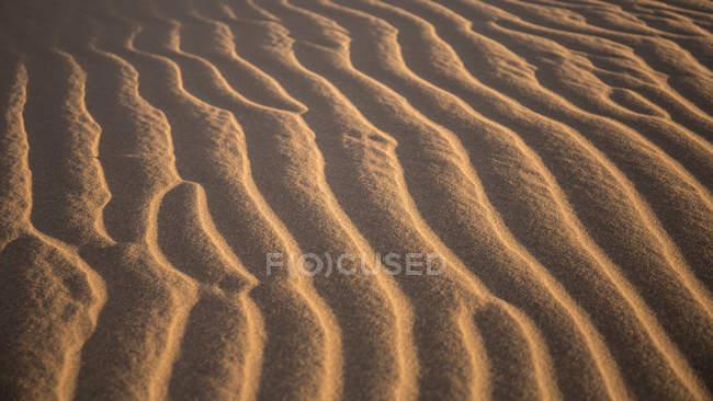 Close-up of rippled sand in sunlight in Sahara desert, Erg Chigaga, Morocco, Northwest Africa — Stock Photo