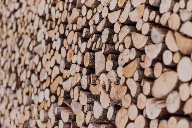 Купу cut дерева, докладний Повний кадр — стокове фото