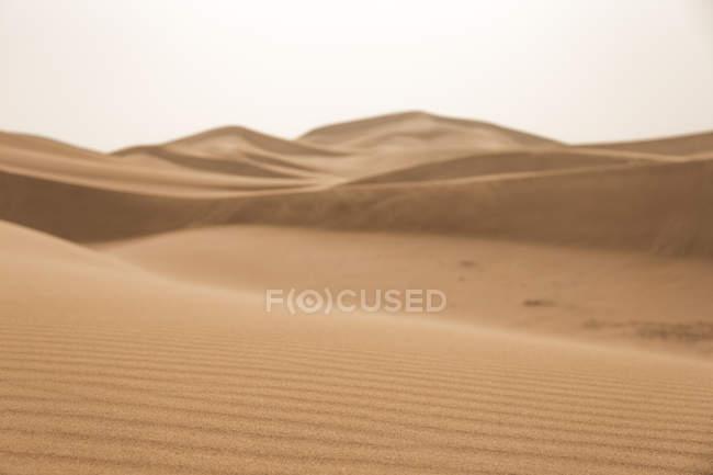 Dune di sabbia con le ondulazioni nel Sahara deserto, dune dell'Erg Chigaga, Marocco, Africa nord-occidentale — Foto stock