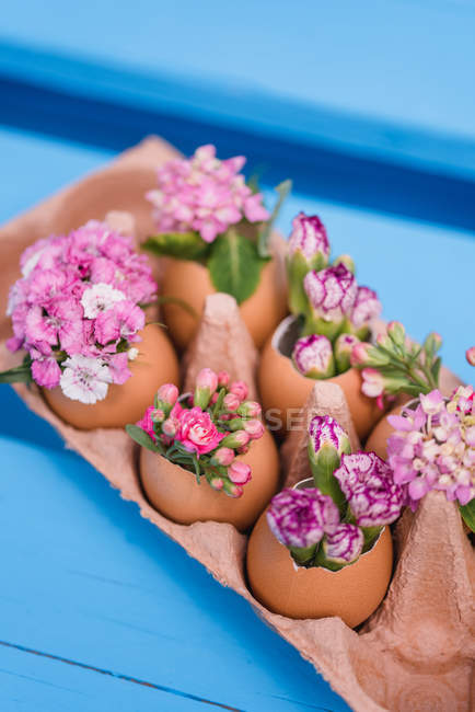 Easter flowers decorated in eggshells, still life — Stock Photo