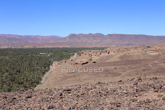 Vegetation in hilly landscape of Jbel Kissane, Agdz, Morocco — Stock Photo