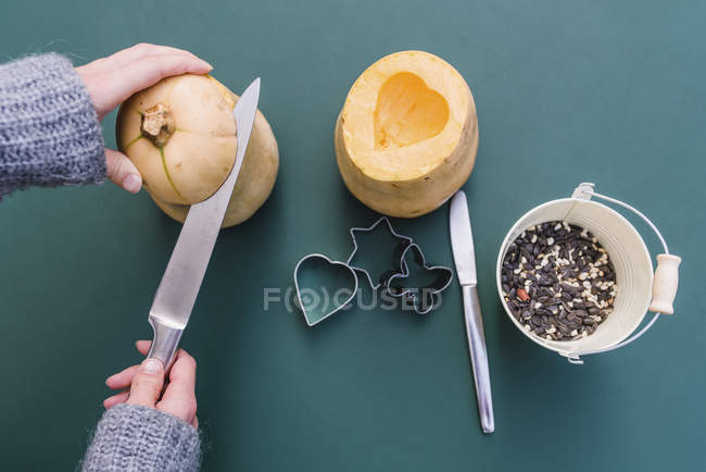 Detail of hands of woman cutting pumpkins for bird feeders with birdseeds in bucket. — Stock Photo