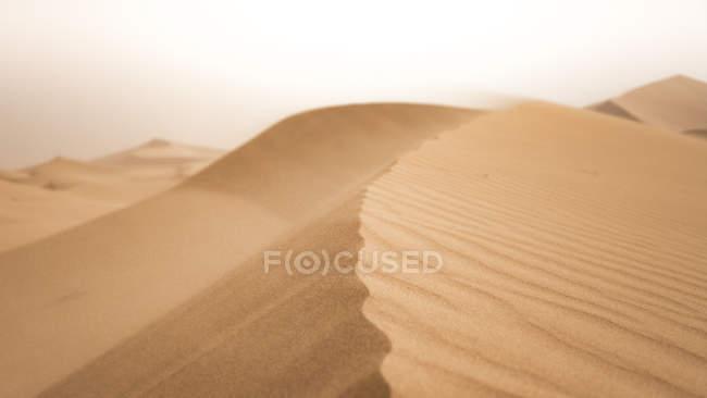 Піщані дюни в Sahara пустелі, Chigaga ЕРГ, Марокко, північно-заході Африки — стокове фото