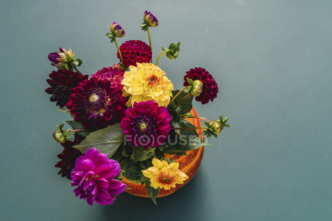 Pumpkin vase with colorful dahlias flowers, still life — Stock Photo