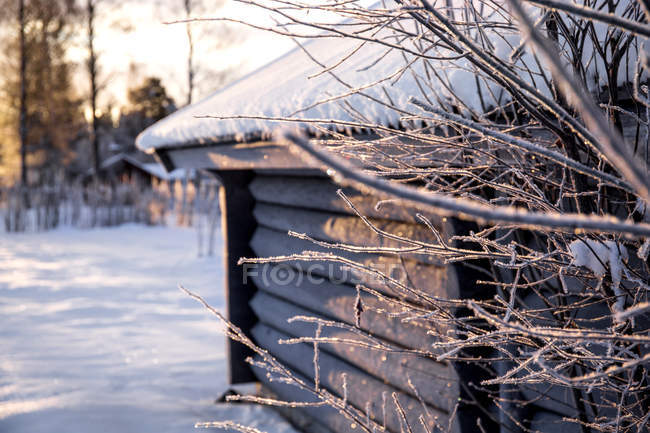 Rural scene of hut in wintry village — Stock Photo
