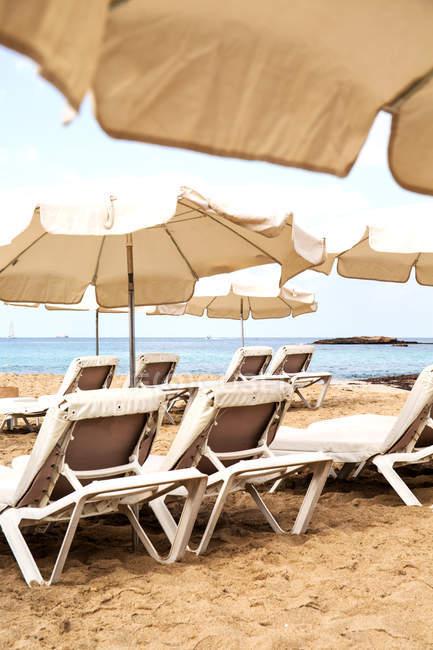 Tumbonas y sombrillas en la costa de verano - foto de stock