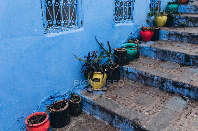 Potted plants and flower pots on stairs in old historical medieval city Chefchaouen in Morocco — Stock Photo