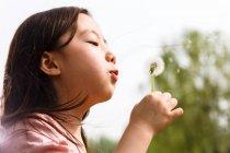 Очаровательный азиатский ребенок, дующий одуванчик на открытом воздухе — стоковое фото