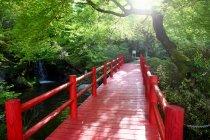 Stupefacente scenario naturale con ponte rosso vuoto — Foto stock