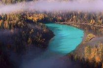 Hermoso paisaje con bosque y tranquilo río azul en Kanas, Xinjiang, China - foto de stock