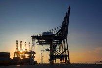 Низкий угол обзора кранов и грузовых контейнеров в гавани в Шэньчжэне, Китай — стоковое фото