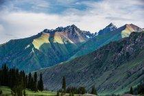Paesaggio incredibile con belle montagne e alberi verdi nella valle — Foto stock