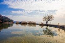 Beautiful scene at Tai lake, Taihu, Wuxi, Jiangsu Province, China — Stock Photo