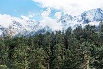 Amazing Landscape in Sichuan Province, Hailuogou scenery, China — Stock Photo