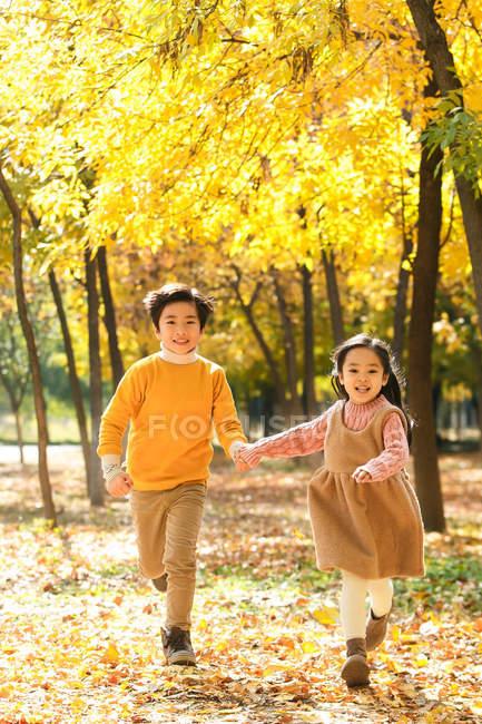 Entzückende glückliche Geschwister laufen gemeinsam im Herbstwald — Stockfoto