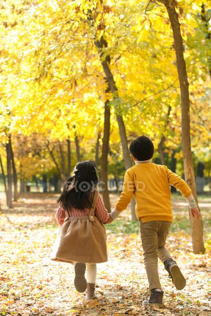 Rückansicht von entzückenden Kindern, die sich Händchen halten und gemeinsam im Herbstpark rennen — Stockfoto