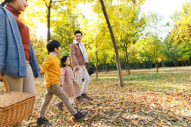 Vista lateral de feliz jovem asiático família segurando as mãos e andando no outono parque, cortado tiro — Fotografia de Stock
